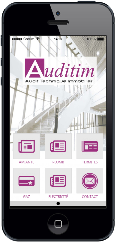 App-auditim-web